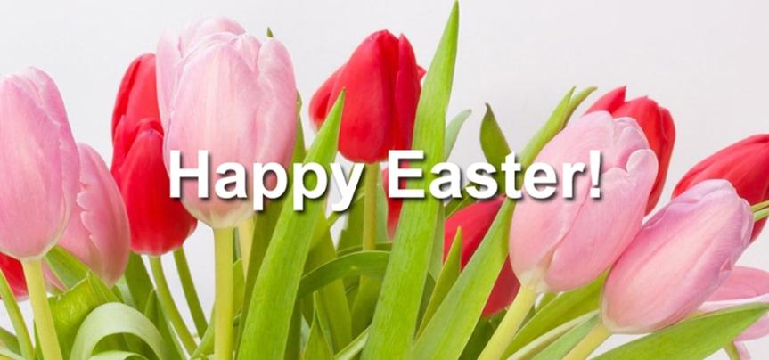 Christ is risen! He is risen indeed,alleluia!